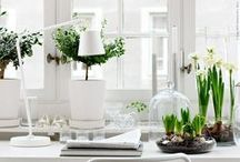 Swedish Style / Ideas, inspiration and top tips for creating the perfect Nordic inspired interior space.