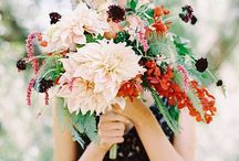 wed / Anything I find striking, lovely or inspiring for tying the knot. / by Heidi Roepke