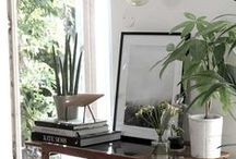 Green Living / Ideas, inspiration and top tips for creating the perfect indoor/outdoor space using plants.