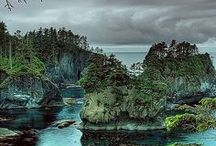 .Washington State Adventures. / by Elizabeth Swearengin-Smith