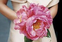 Fabulous Florals / bridal bouquets