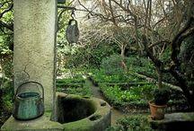 Gardens, plants, etc.