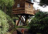 Treehouses / Un rêve de gosse qui se réalise / A childhood dream come true