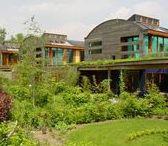 Green Buildings / Concepts et réalisations d'immeubles résidentiels