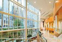 Favorite Places & Spaces / by Mayo Clinic