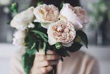 FLEURS // FLOWERS / Inspirations fleurs http://www.leblogdemadamec.fr