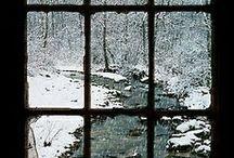Winter / by Sydny Koch