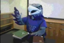 UW-Whitewater Career Videos
