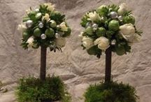Loving topiaries / by Catalina