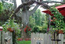 Get outside! / Backyard ideas / by Jackie McDonald