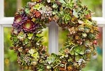 Wreaths/Wall Hangings