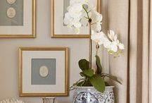 Traditional Interiors / by Hamptons Style