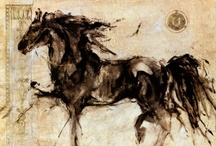 horses / by Beth Phillips