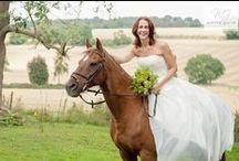 Horse & Bride Shoot