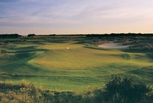 South Carolina Golf / RBC Heritage, 94th PGA Championship at the Ocean Course on Kiawah Island, and South Carolina golf courses / by Discover South Carolina