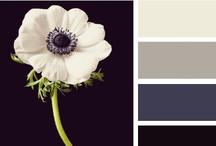 | colours |