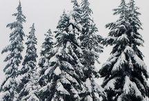 Inspired | Winter ♥