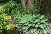 Garden | How To ♥ / How to garden organically - watering, composting, natural pest control, working with weeds, creating a healthy co-habitat, sheds, and other beautiful things to include in my garden