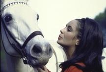 Equine Beauty / by Roxanna Urdaneta