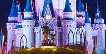 Disney | WDW Tips ♥ / All about rides, attractions, shows, and characters in Walt Disney World.  I have separate boards for WDW Resorts, WDW Food, Disneyland, Disney Cruises, and Documenting Your Disney Trip.