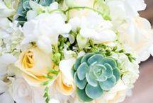 Wedding / by Caitlin Hagenbaumer