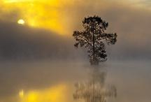 Amazing sceneries/Travel places / by Jessie Roberts Seronko
