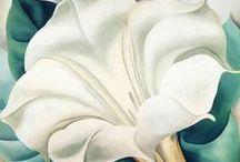 ART O'Keeffe's Flowers & Leaves / by Elyse Kutz