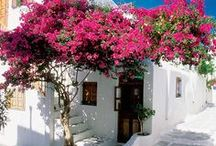STYLE mediterranean & bohemian / architecture and space style