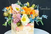 Spring Has Sprung / Inspiration for Spring, and Easter entertaining.
