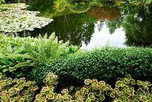 ninfa garden
