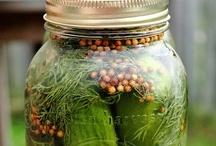 {diy} fermented / by Dawn Selene