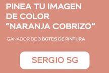 "Concurso #NaranjaCobrizo / Concurso: ""Pinea tu imagen de color Naranja Cobrizo"""