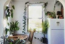 ☼ home / ideas to organize home