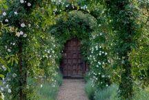 Brigitte's Secret Garden / by Brigitte Thiele