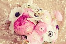 Wedding / by Yasi K