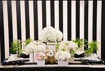 Black and White / by Napa Valley Linens
