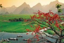 Asia & Arabia Cruises / We are thrilled to announce our first ever voyages to Asia & Arabia in 2014 and 2015 on our newest yacht. Choose from the following cruises: Wonders of Arabia (Athens to Dubai), Pearls of the Indian Ocean (Dubai to Singapore), Singapore & The Malay Peninsula, Treasures of SE Asia (Singapore to Hong Kong), Vietnam Unveiled (Ho Chi Minh City to Hong Kong) & more!
