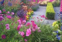 Flowers and Gardens 2 / by Peggy Simmons