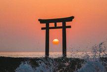 Japon / Japan / Guide de voyage au Japon / The best of Japan!