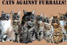 Cat Causes