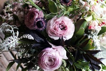 flowers & outdoor inspiration / by Anne