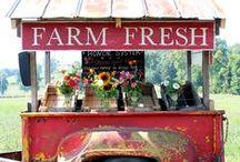 Vintage Farmer's Market Party