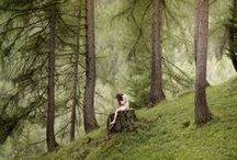Forest Bathing / Mossy wooded glades with a path running through. / by Jenny Hoople