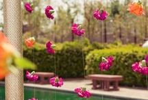 Party Ideas / by Freytag's Florist