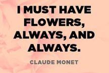 inspiration / by Freytag's Florist