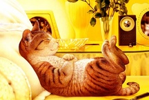 """~ The Cat in Art ~ / """"...I regard cats as one of the great joys in the world. I see them as a gift of highest order.""""  ~ Trisha McCagh  / by Diane Malavolti"""