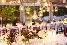 Wedding reception ideas / by Holly Arredondo