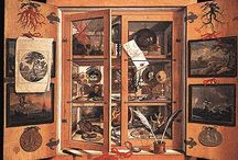 Cabinet of Curiosities / Weird things, cool things, and old school things / by Mary Adams