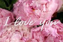 Happy Valentine's Day / Take a detour to Lover's Lane via Freytag's Florist