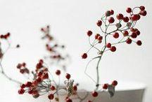 December 2013-Winter berries / Winter berries and bouquets
